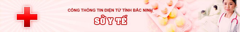 Cổng thông tin điện tử tỉnh Bắc Ninh